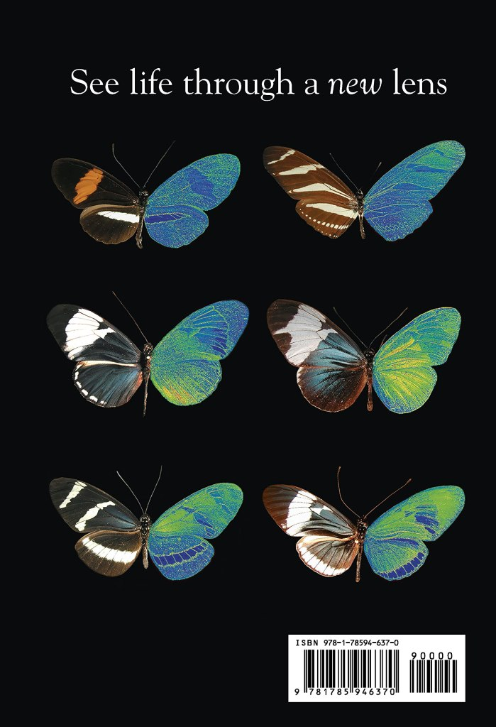 Butterflies: the back cover of book.